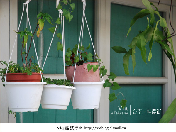 【台南神農街】一條適合慢遊、攝影、感受的老街6