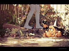 Happy {floating} Bench Monday - Halloween Spirit Week (RiaPereira - here and there) Tags: halloween bench 50mm witch levitation wicked 7d monday broomstick levitating halloweenspirit stripedstockings havingsomefun benchmonday happybenchmonday riapereira floatingwitch pumpkinsandblackcat floatingonabroomstickreadyfortakeoff