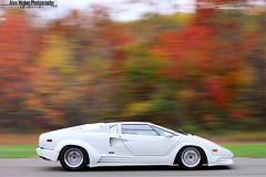 Countach. (Alex Weber) Tags: orange white verde g super lp 5000 lamborghini countach gallardo lambo 560 qv superleggera 5000qv lp560