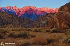 Mount Whitney Sunrise (Birdman of El Paso) Tags: from sunrise photography texas mt nevada alabama taken joe el sierra lila hills mount whitney paso grossinger