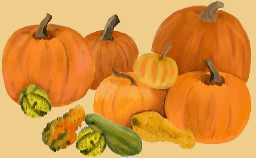 Pumpkins and Gourds - by Iris H. Zuares -  A Digital Painting by eyewrisz