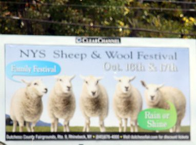 Wool Fest Sign