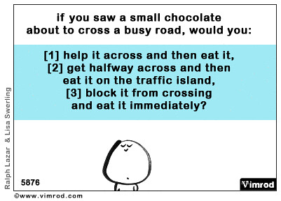 If you saw a small chocolate about to cross a busy road...