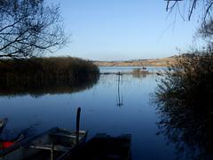 Pescando (Birnardo) Tags: lago barca italia toscana acqua chiusi digitalcameraclub abigfave flickraward
