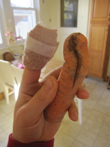 Carrot Finger