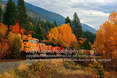 Entering Hope (Deby Dixon) Tags: autumn trees fall nature train landscape photography hope interesting colorful all photographer fallcolors overcast idaho explore rights traveling hillside frontpage reserved bnsf deby 2010 northidaho easthope idahopanhandle beautifulsetting debydixonphotography