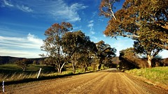 TUENA NSW AUSTRALIA (smortaus) Tags: desktop trip trees color art rural wonderful landscape photo bush image screensaver background sony australian scenic australia wideangle nsw dslr backroads 142 australianimages a350 sigma1020mmlens sonydigitalslr australianphotography someofmybestwork australianimage australiansw bestofaustralia thisisaustralia australianphotos tuena sonya350 142mp danielhayes photoslandscapes photodanny bestcapturesaoi imagesofaustralia photosofaustralia dannyhayes photobydannyhayes photosfomaustralia sigmawideanglelense tuenanswaustralia bushadventureget imageaustralian hayesa350dslrdigital imagesony landscapesofnsw coolunusualwallpapersforwindows helloworldthisisaustralia
