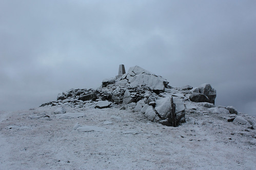 Summit of the Buck