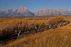 Little Fence on the Prairie (dbushue) Tags: autumn mountains fall fence valley peaks tetons range soe 2010 grandtetonnationalpark coth gtnp cathedralgroup naturesgarden absolutelystunningscapes damniwishidtakenthat dragondaggerphoto flickrclassique coth5 photocontesttnc11 dailynaturetnc11