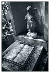 (jordi.martorell) Tags: cameraphone statue mobile geotagged mexico df cementerio cellphone movil samsung mobil diademuertos toned estatua cementery virado cementiri sanjuanico cruzadas sghg600 samsungsghg600 sanjuanixhuatepec sanrafaelticoman cruzadasii