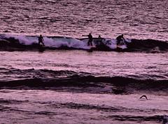 destinazione libert (Juliet__Photography) Tags: california photo surf mare foto surfer happiness guys persone amore luce bellezza onde libert spensieratezza