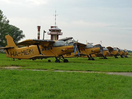 AN-2's