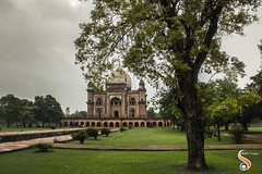 Monumental Opulence (Shikher Singh) Tags: safdarjungtomb mausoleum mughal architecture redstone delhi dome tree garden charbagh green lush clouds shikher'simagery shikhersimagery