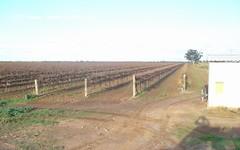 Farm 47 Bob Irvin Road, Hanwood NSW