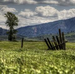Today's Remains (Eric Vondy) Tags: grass fence ruins cottonwood wyoming jacksonhole grandtetonnationalpark mormonrow singleexposurehdr