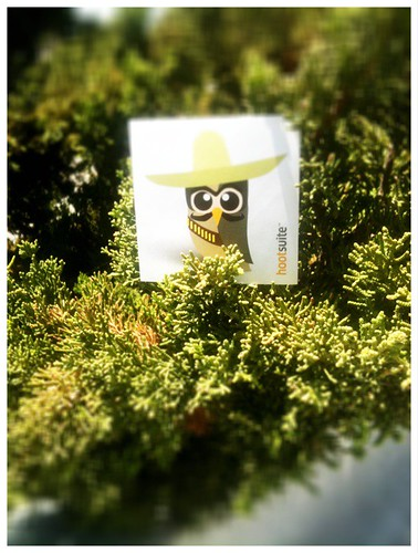 Hola Mr.@HootSuite! Nice 2 see u enjoying the sun! (is it wrong that Im tweeting this from #Echofon? He he) thx @blackfootbette!