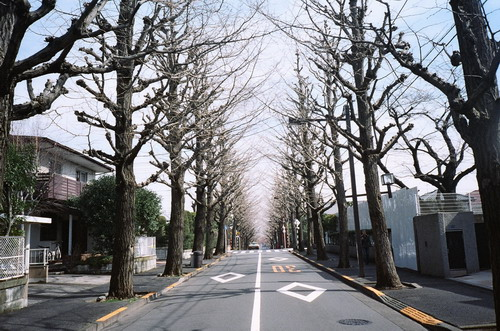 tokyo2009_film_24