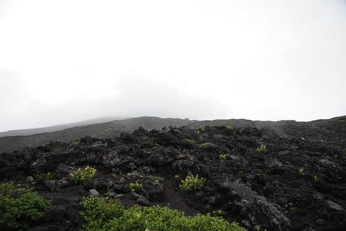 段々と溶岩台地になってきた。