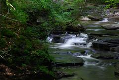 IMGP0121 (jroz) Tags: trees summer nature creek landscape waterfall drycreek rocks hike gorge moraviany flowingwater scenicwater fillmoreglen lanterncreative
