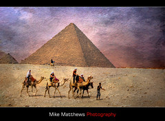 Caravan (mike matthews) Tags: travel texture pyramid egypt cairo camel