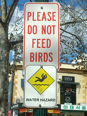 Don't feed to birds...
