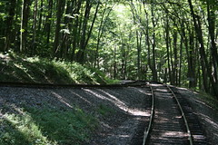 switchback (blossomdawes) Tags: cassscenicrailway