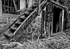 La bicicleta (elojocsmico) Tags: vanagram