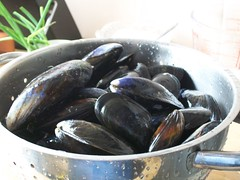 Mussels Alfredo (1) (Astrochef) Tags: cooking tomatoes shellfish seafood recipes mussels mallorca fennel morecambe broth alfredos boltonlesands calamillor