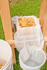 Pressoir à cidre: étages de pommes pressées