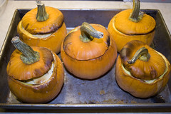 little_pumpkins