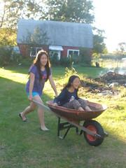 Having Fun in the Wheelbarrow