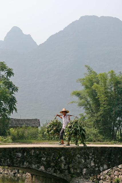 A farmer in Yangshuo, Guangxi, China