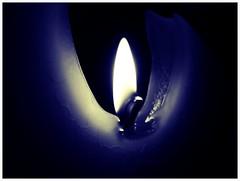 Flame (Magikphil) Tags: art home train vacances lomo nikon europe photographie suisse pierre lac bretagne danse minimal bleu styles porte express alter amateur objet 2009 paysages philippe camerabag ch 2012 2010 vd montes iphone 2011 d90 harmonia pictureshow lumière iphone4 vuiteboeuf psexpress iphoneographie magicphil alterphil magikphil montesphilippe magicphilch