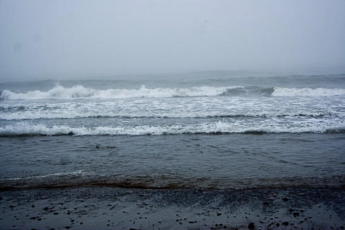 Lawrencetown Beach