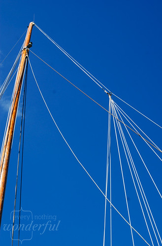 Sail Lines