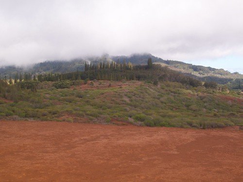 Lana'i Island Views from Horse Trail