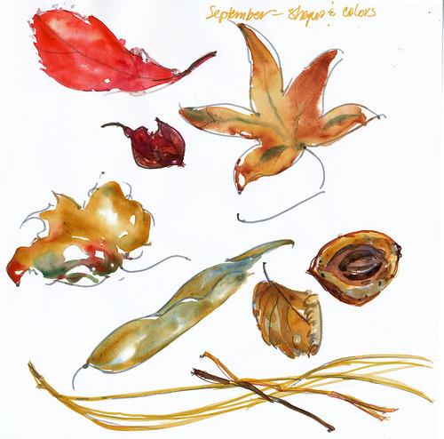 Sept.-leaves