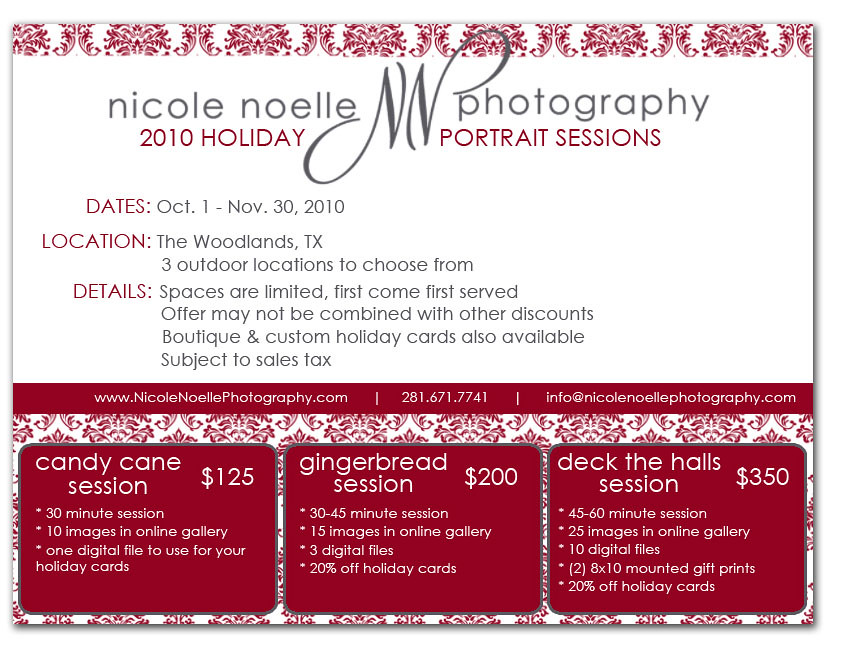 Holiday 2010 Portrait Specials