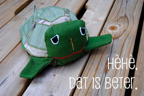 Axenroos: de (tevreden) schildpad