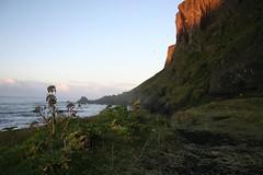 Reynisdrangar na Praia de Vík í Mýrdal Islândia