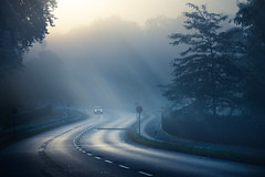 B1 (96dpi) Tags: road autumn berlin fall fog pen dawn nebel herbst olympus dmmerung potsdam b1 ep2 strase 45200 bundesstrase gettyimagesgermanyq1