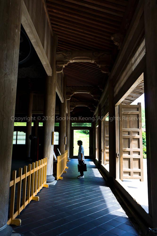 Alone @ Kenchoji Temple, KamaKura, Japan