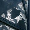 where the heart is (overthemoon) Tags: blue light monochrome leaves triangles square schweiz switzerland suisse panes lausanne greenhouse svizzera botanicalgarden feuilles vaud serre romandie imagepoésie utata:project=tw231