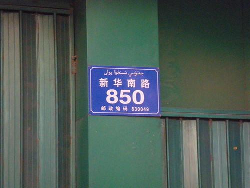 IMGP5953