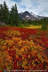 Oregon Tundra 2