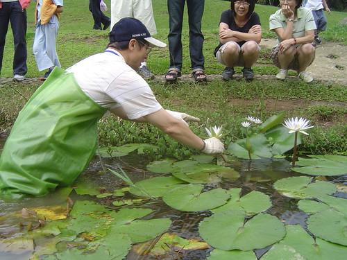 清理生態池期間,遊客紛紛好奇詢問。