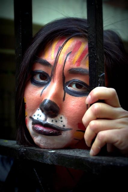 Lomo-ish Tiger