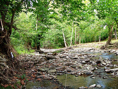 Jessamine Creek South of Bridge (William Bell) Tags: creek kentucky jessamine wilmore