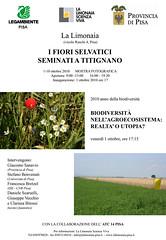 Mostra fiori a Titignano