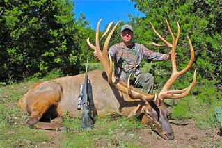 Elk 465